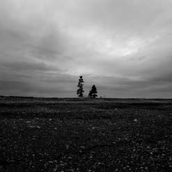 Maine Landcscapes #