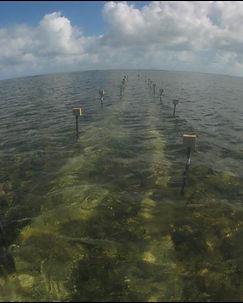 isla 2.jpg