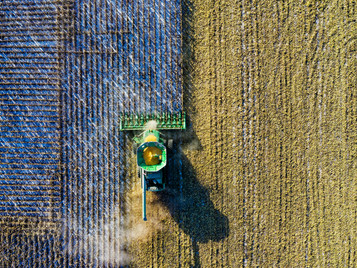 Is regenerative agriculture the future of environmentally sustainable fashion?