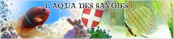 banniere_laquadessavoies-405bf3b.png