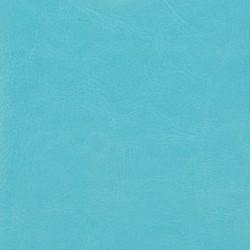 AQUA BLUE COVER