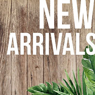 new-arrivals-icon.jpg