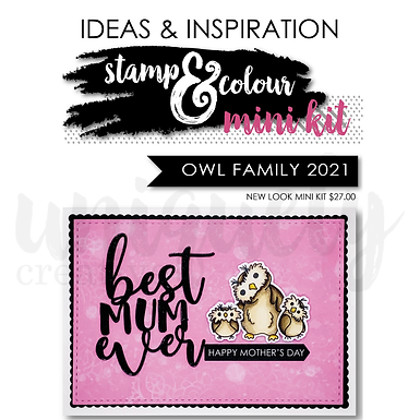 OWL FAMILY IDEA BOOK