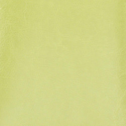KIWI GREEN COVER