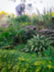 virginia garden_1.jpg