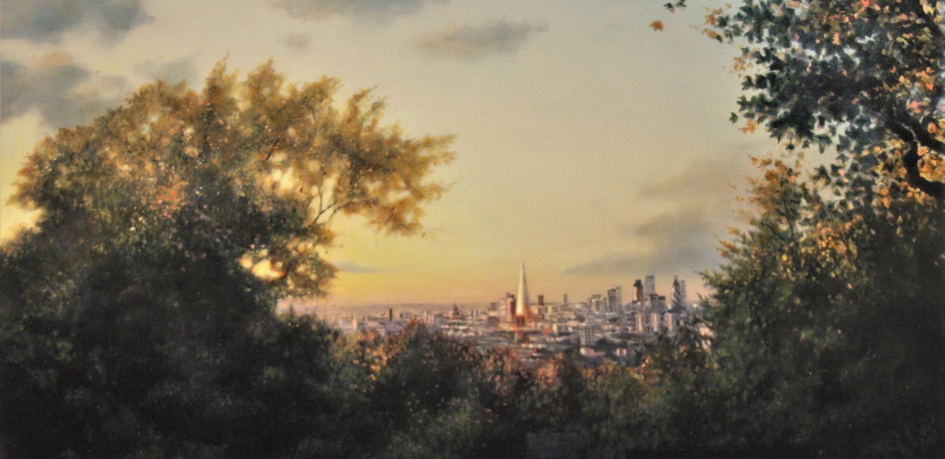 Autumn sun over the city (Honor Oak park)