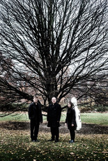 LBT Tree