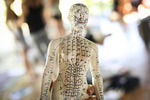 M Meridian Lines and Yoga Vari Morales.j
