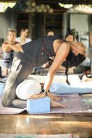 M Vari Morales Adjustment Trainings.jpg