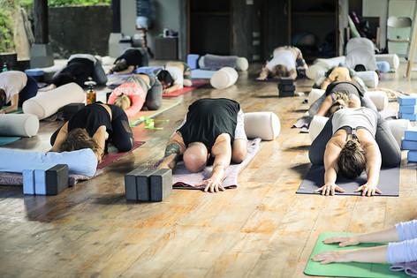 M Yoga Training Thailand Vari Morales.jp