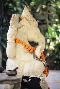 M Ganesha Yoga Vari Morales.jpg
