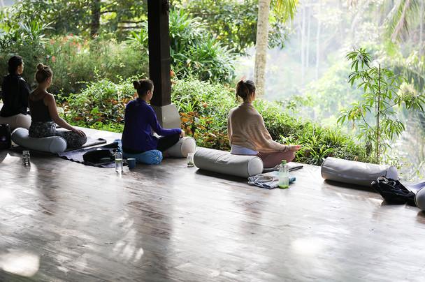 L Yoga Training in Jungle.jpg