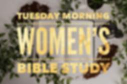 Womens Bible Study.png