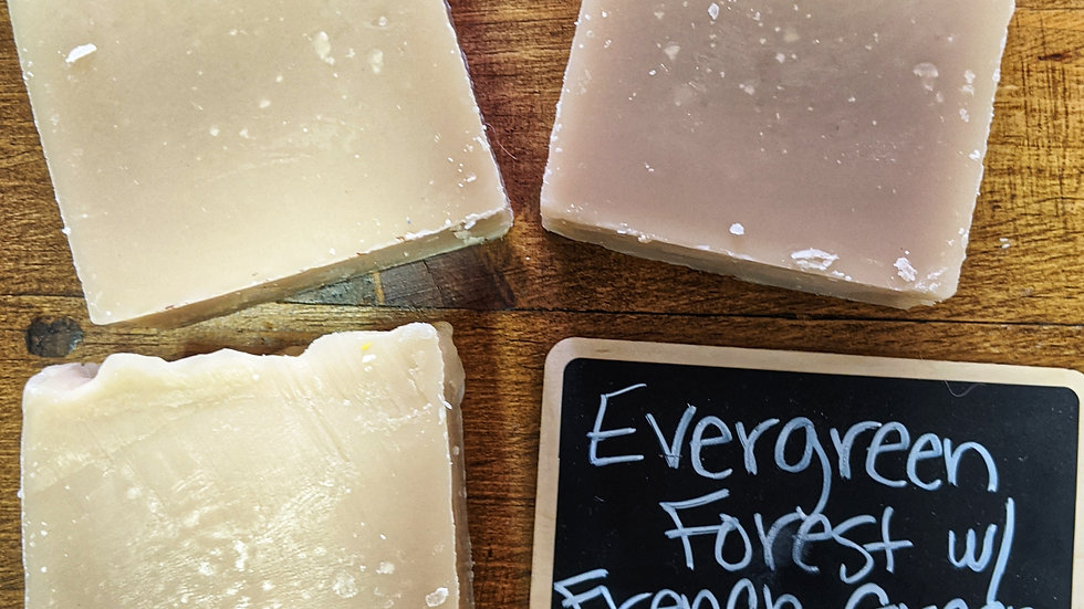 Evergreen Forest Beer Soap