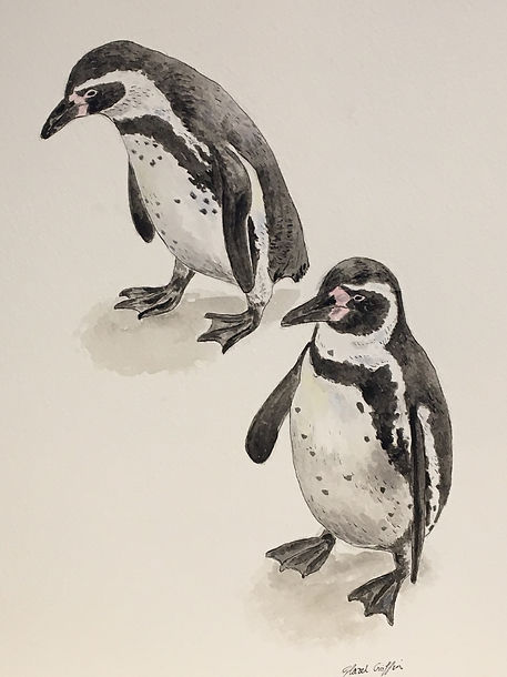 2 penguins.JPG