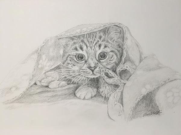 5 kitten.JPG