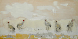 Five Sandhill Cranes