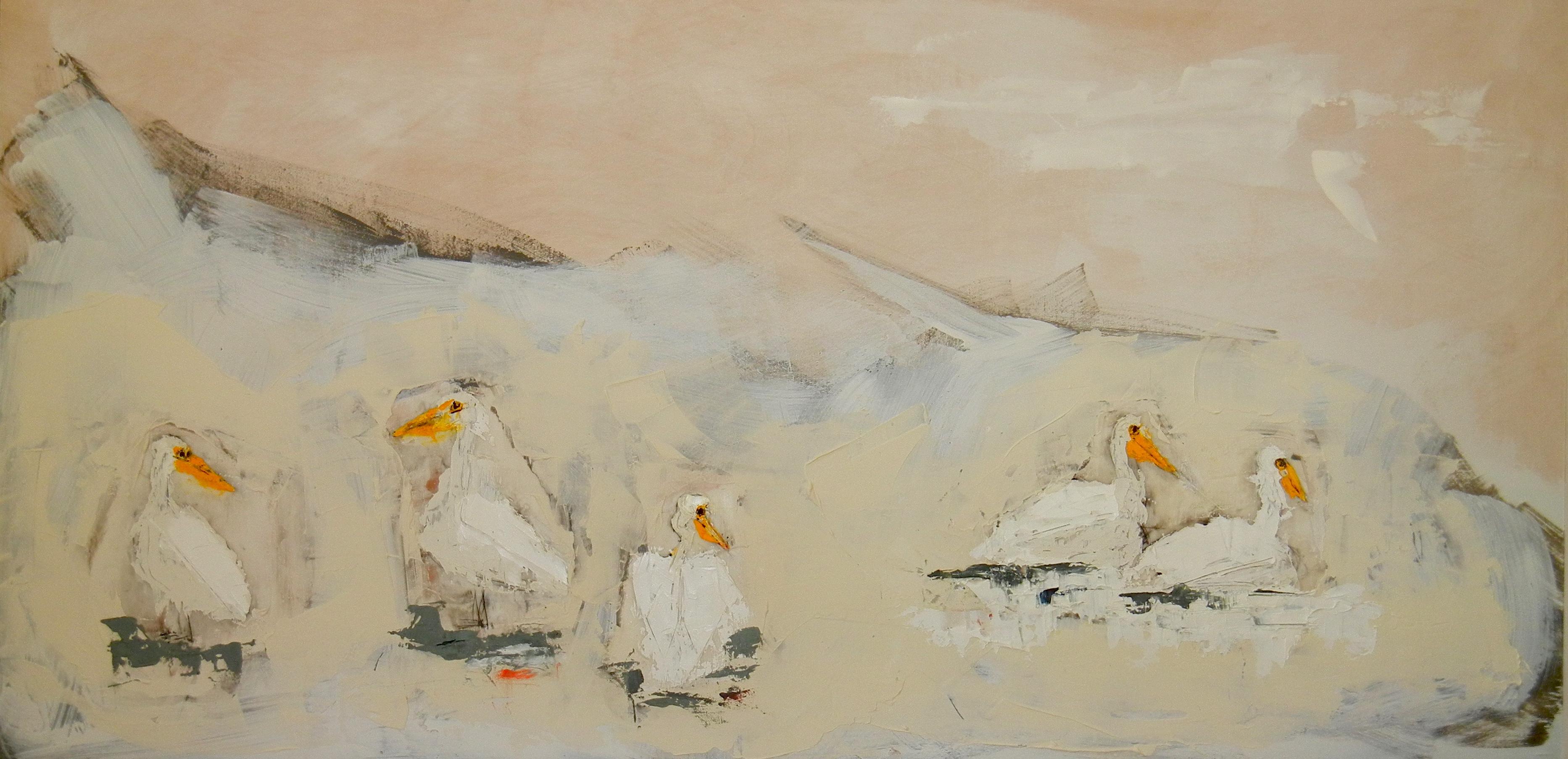 Five Pelicans
