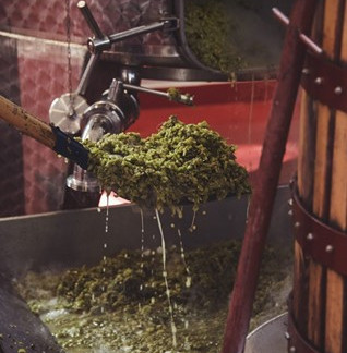 Domaine Agrovision: Turning Wine By-Products into Pizza and Value-Added Products