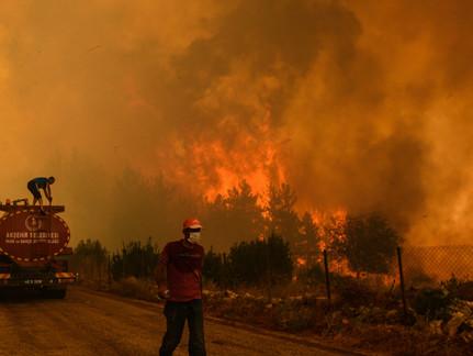 Wildfires Sweep Through Mediterranean Countries
