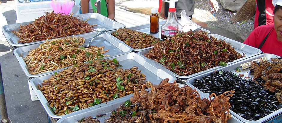 Edible Insects: A New Frontier for Western Cuisine With Ancient Roots