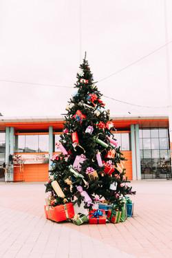Главная елка 5 м