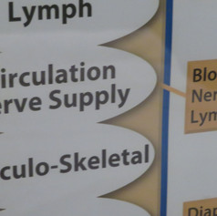 Main BodyTalk Protocol Chart - Up close...