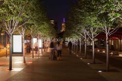 New York - MMA_LD-2905