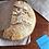 Thumbnail: Fresh Baked Sourdough Breads by Ironpot Artisan