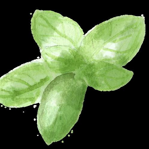 Organic Basil Bunch