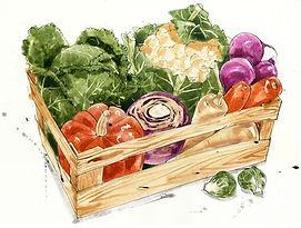 watercolour produce box.jpg