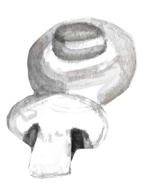 Organic Mushroom Pack - White Cup