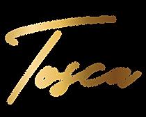 logo-zlata-transparent.png