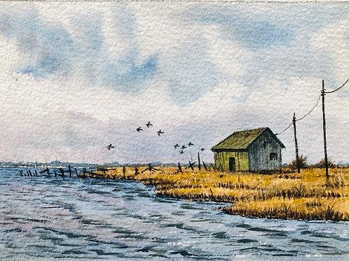 Marsh Shanty