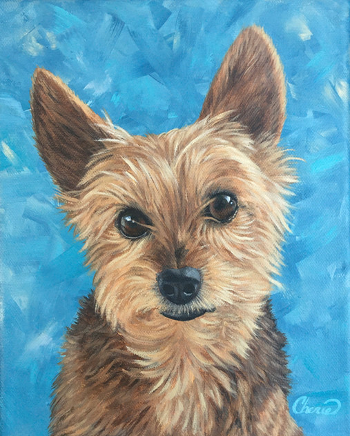 Yorshire Terrier Yorkie Painting