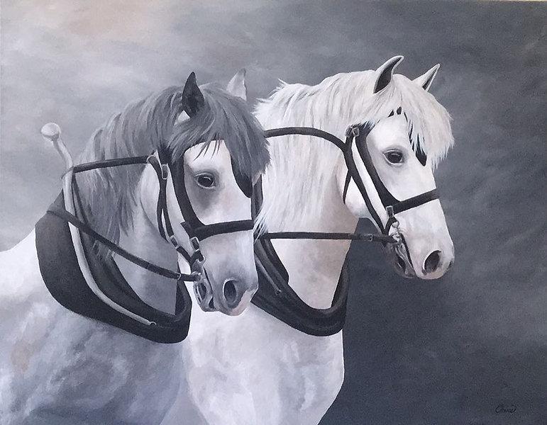 farm horses 2.jpg