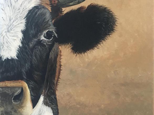 """Luna"" Cow Painting Original, 10x10 Farmhouse Wall Art Decor - Cherie Dimsey"