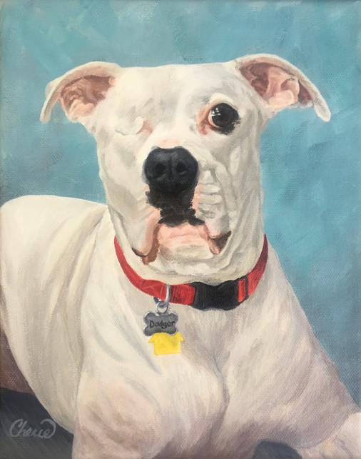 """Dodger"" American Bulldog Portrait Painting"