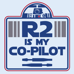 R2 is my co-pilot