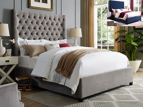 ALL ASTER BED