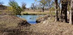 riverbed struggle