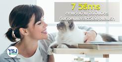 7 วิธีตกแต่งบ้านให้เป็นมิตรกับทั้งคนและสัตว์เลี้ยงแสนรัก