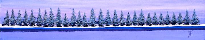 Winter Firs
