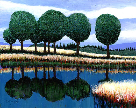 Lakeside Meadow