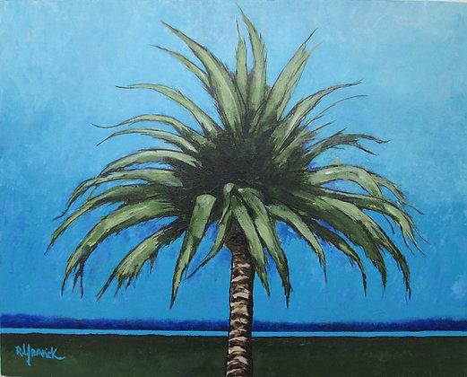 Evening Palm