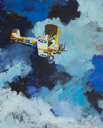Double Winger Pilot