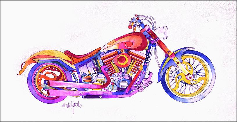 Chromatic Bike