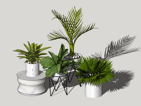 07 Coleções Incríveis de Vegetação no 3D Warehouse