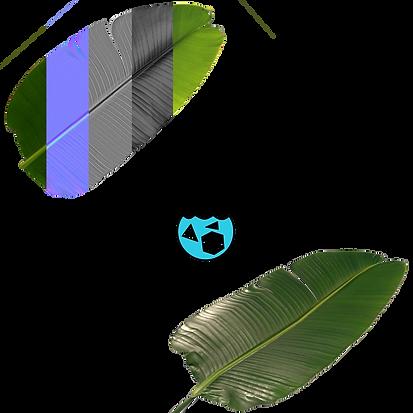 materials-conversion2.png