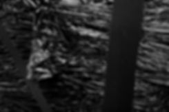 Jean-Baptiste Béranger, Håkan Ivarsson, Stefan Johansson, Håkan, Hakan, Stergos Machlis, Mossutstälningar, Allkonstrumet, Konstepidemin, Pannrummet, Storagalleriet, ID:I Galleri, 3:am:still:looking, memory of the past mirrored as the future, black substance, sculpture, installation, video, performance, franko b, trevi, Palazzo Lucarini Contemporary
